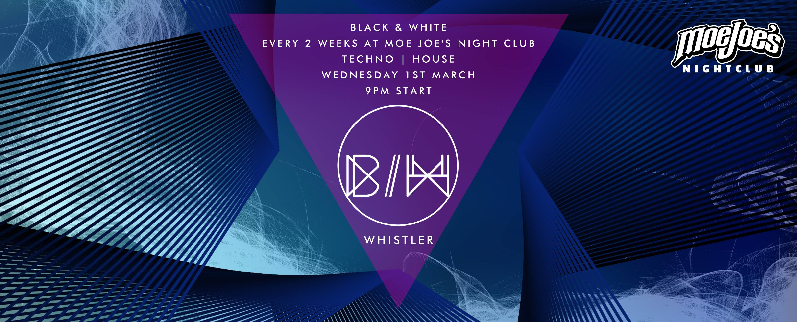 Whistler House and Techno Party